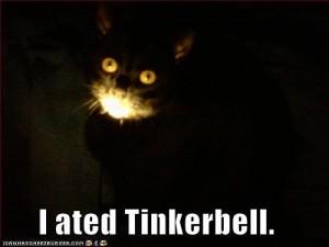 Katt i mörker